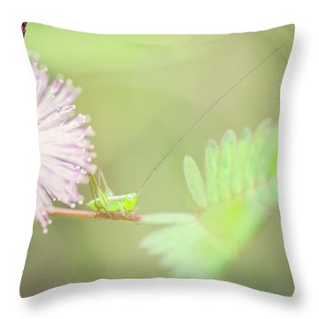 Throw Pillow featuring the photograph Nymph by Heather Applegate