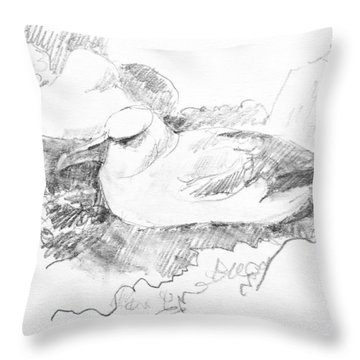 New Zealand White-capped Mollymawk Throw Pillow