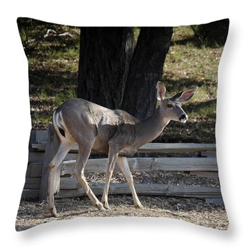 O Deer Throw Pillow