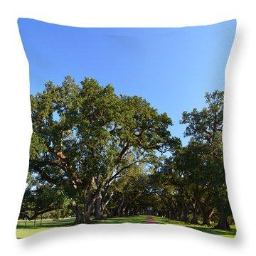 Oak Alley Plantation Panoramic Throw Pillow