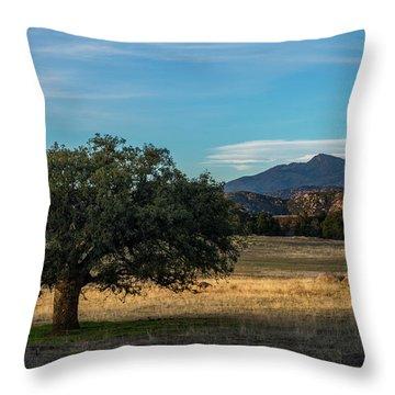 Oak And Cuyamaca Throw Pillow