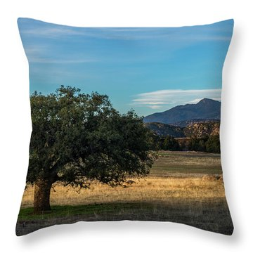 Oak And Cuyamaca Throw Pillow