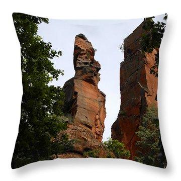Oak Creek Canyon Throw Pillow by David Lee Thompson