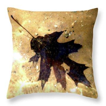 Oak Leaf Underwater Throw Pillow by Tara Hutton
