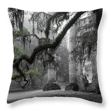 Oak Limb At Old Sheldon Church Throw Pillow