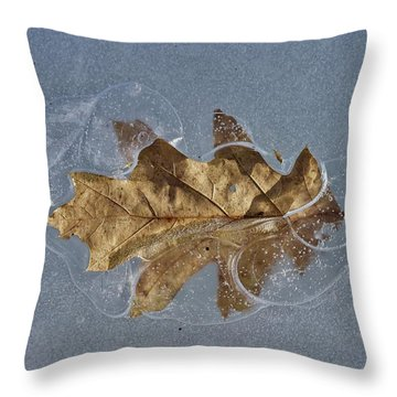 Oak On Ice Throw Pillow