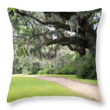 Throw Pillow featuring the photograph Oak Over The Trail by Michael Colgate