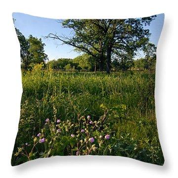 Oak Savanah Throw Pillow