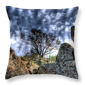 Throw Pillow featuring the photograph Oak Tree by Jim and Emily Bush