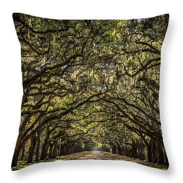 Oak Tree Tunnel Throw Pillow