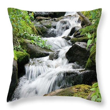 Throw Pillow featuring the photograph Oasis Cascade by David Chandler