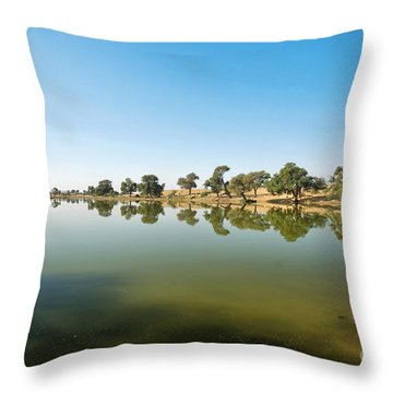 Throw Pillow featuring the photograph Oasis by Yew Kwang