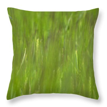 Oatfield Throw Pillow