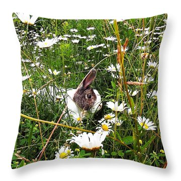 Obelix And Daisies  Throw Pillow