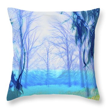 Oberlin Pacific Transition Throw Pillow