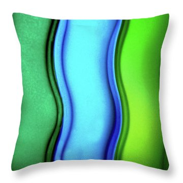 Objectified The Feminine Throw Pillow