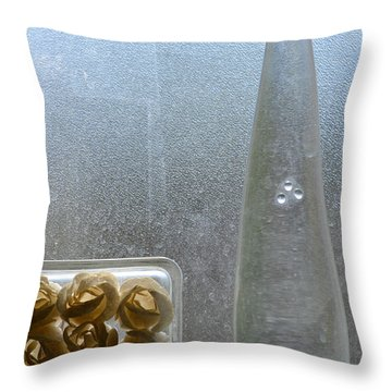 Obscured Clarity Throw Pillow