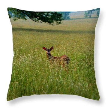 Observer Throw Pillow