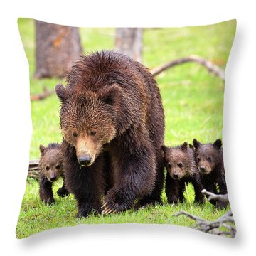 Obsidian Family Throw Pillow by Aaron Whittemore