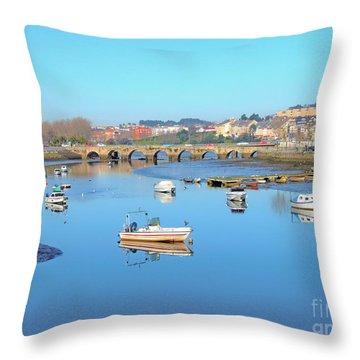 O'burgo River Throw Pillow by Andrew Middleton