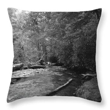 Ocanaluftee River - Great Smokey Mountains Throw Pillow
