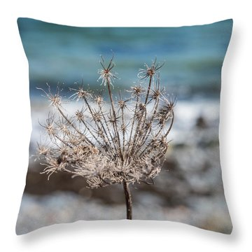 Ocean Burst Throw Pillow