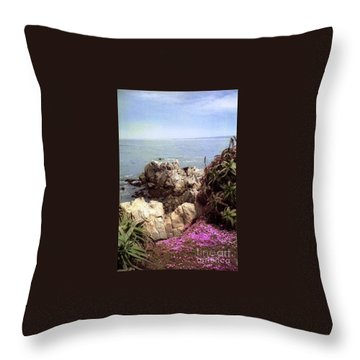 Ocean View Rock And Flowers Throw Pillow