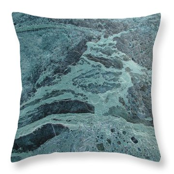 Oceanic Creature Throw Pillow