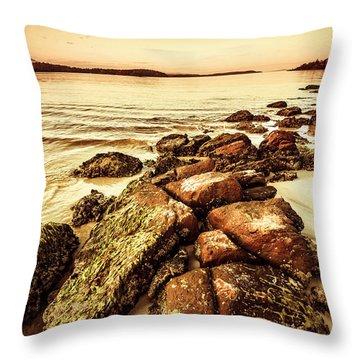 Oceanic Harmony Throw Pillow