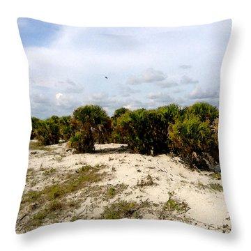 Oceans Bluff   Throw Pillow