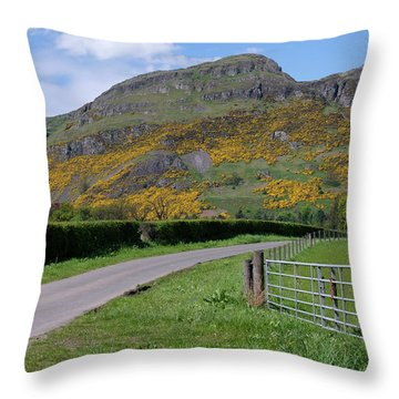 Throw Pillow featuring the photograph Ochil Hills In Clackmannanshire by Jeremy Lavender Photography