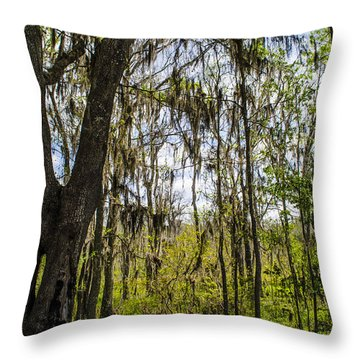 Ocklawaha Spanish Moss In The Swamp Throw Pillow