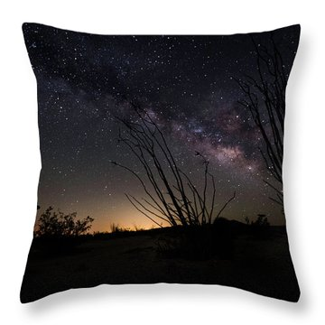 Ocotillo And Dino Milky Way Throw Pillow