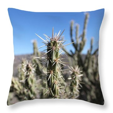Ocotillo Throw Pillow
