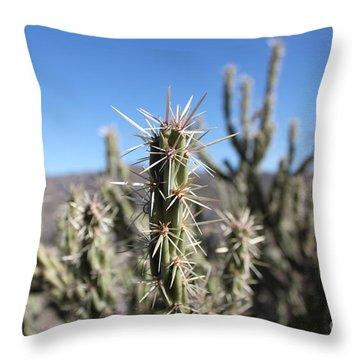 Throw Pillow featuring the photograph Ocotillo by Antonio Romero