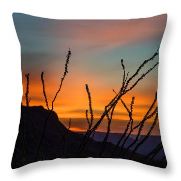 Ocotillo At Sunset Throw Pillow