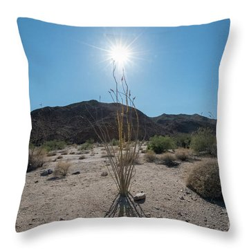 Ocotillo Glow Throw Pillow