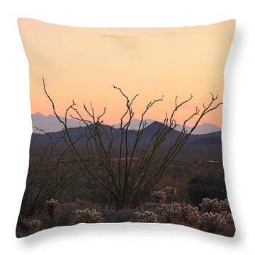 Throw Pillow featuring the photograph Ocotillo Sunset  by Christy Pooschke