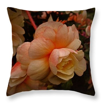 Throw Pillow featuring the photograph Vintage Begonia No. 2 by Richard Cummings