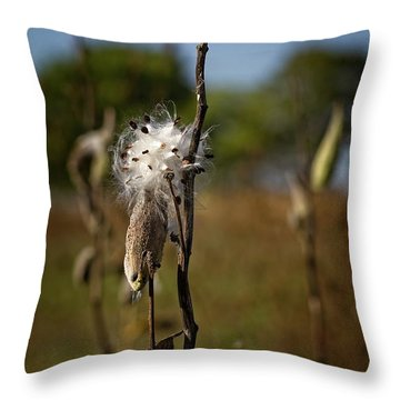 October Forests Throw Pillow