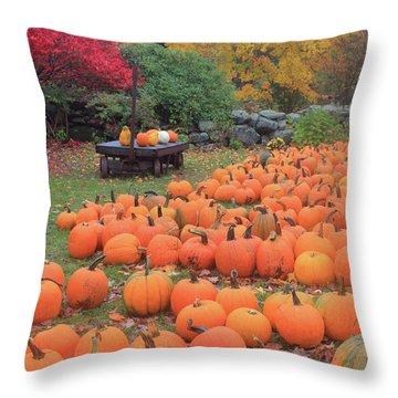 October Harvest Throw Pillow by John Burk