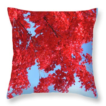 October In The Valley - Fire In The Sky Throw Pillow by Brooks Garten Hauschild