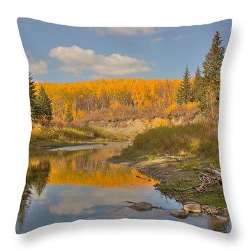 Throw Pillow featuring the photograph October by Jim Sauchyn