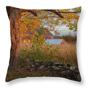 Throw Pillow featuring the photograph October Morning 2016 by Bill Wakeley