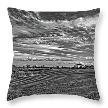 October Patterns Bw Throw Pillow
