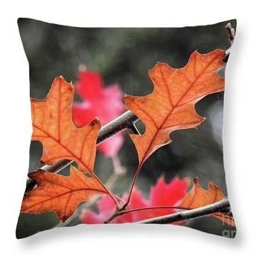 Throw Pillow featuring the photograph October by Peggy Hughes