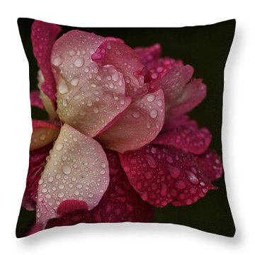 October Rose In The Rain Throw Pillow by Richard Cummings