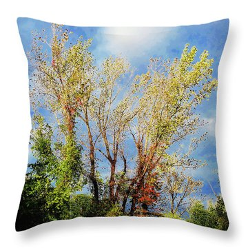 October Sunny Afternoon Throw Pillow