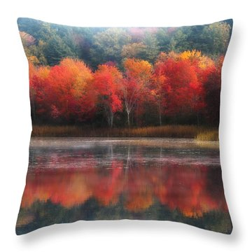 October Trees - Autumn  Throw Pillow by MTBobbins Photography
