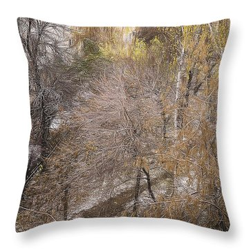 Throw Pillow featuring the photograph October by Vladimir Kholostykh
